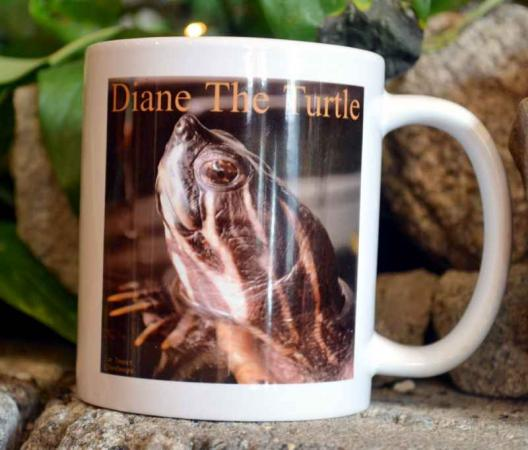 Diane The Turtle Mug
